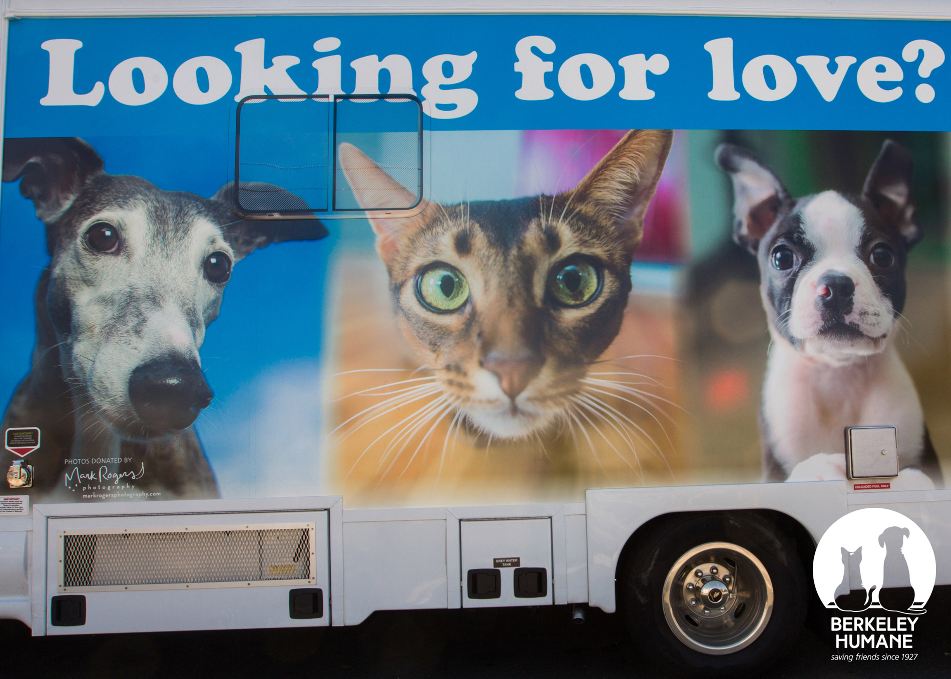 Commissioned Photography | Berkeley Humane Van by Mark Rogers