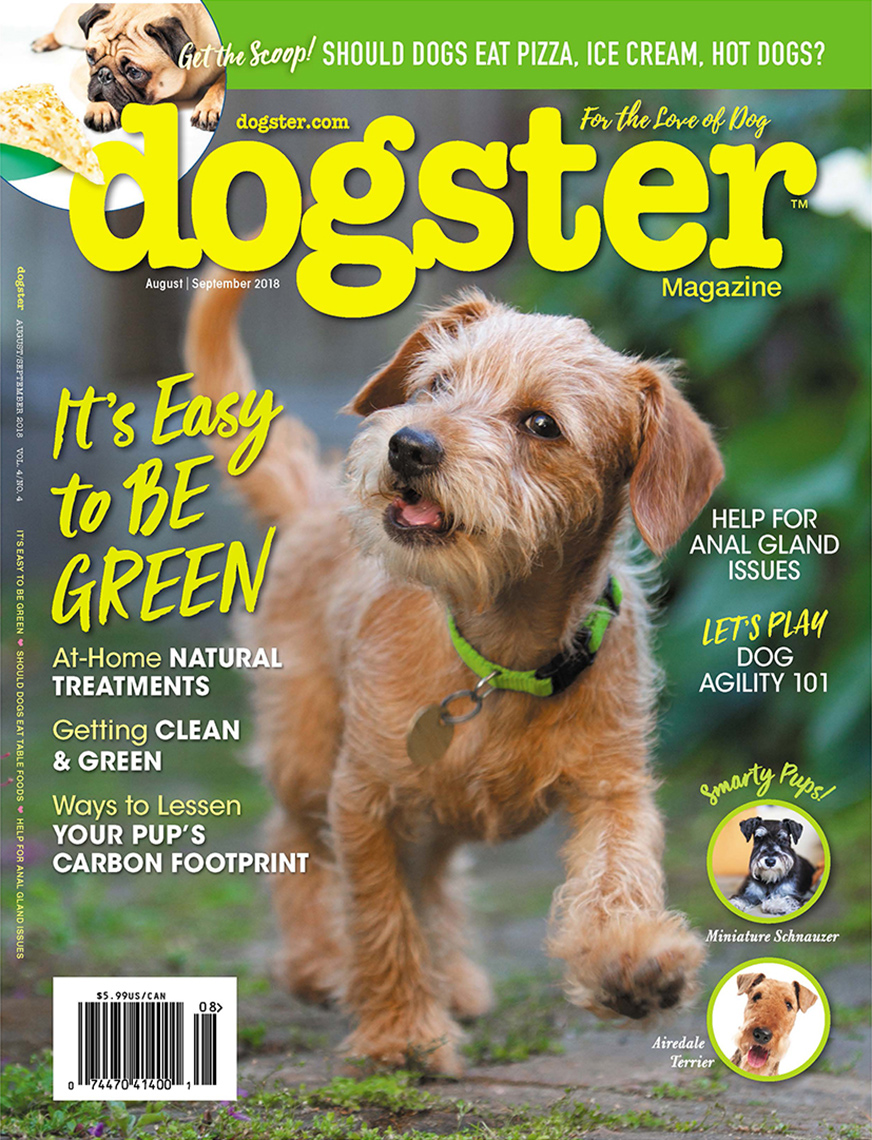 Editorial Photography | Dogster Cover of Puppy by Mark Rogers