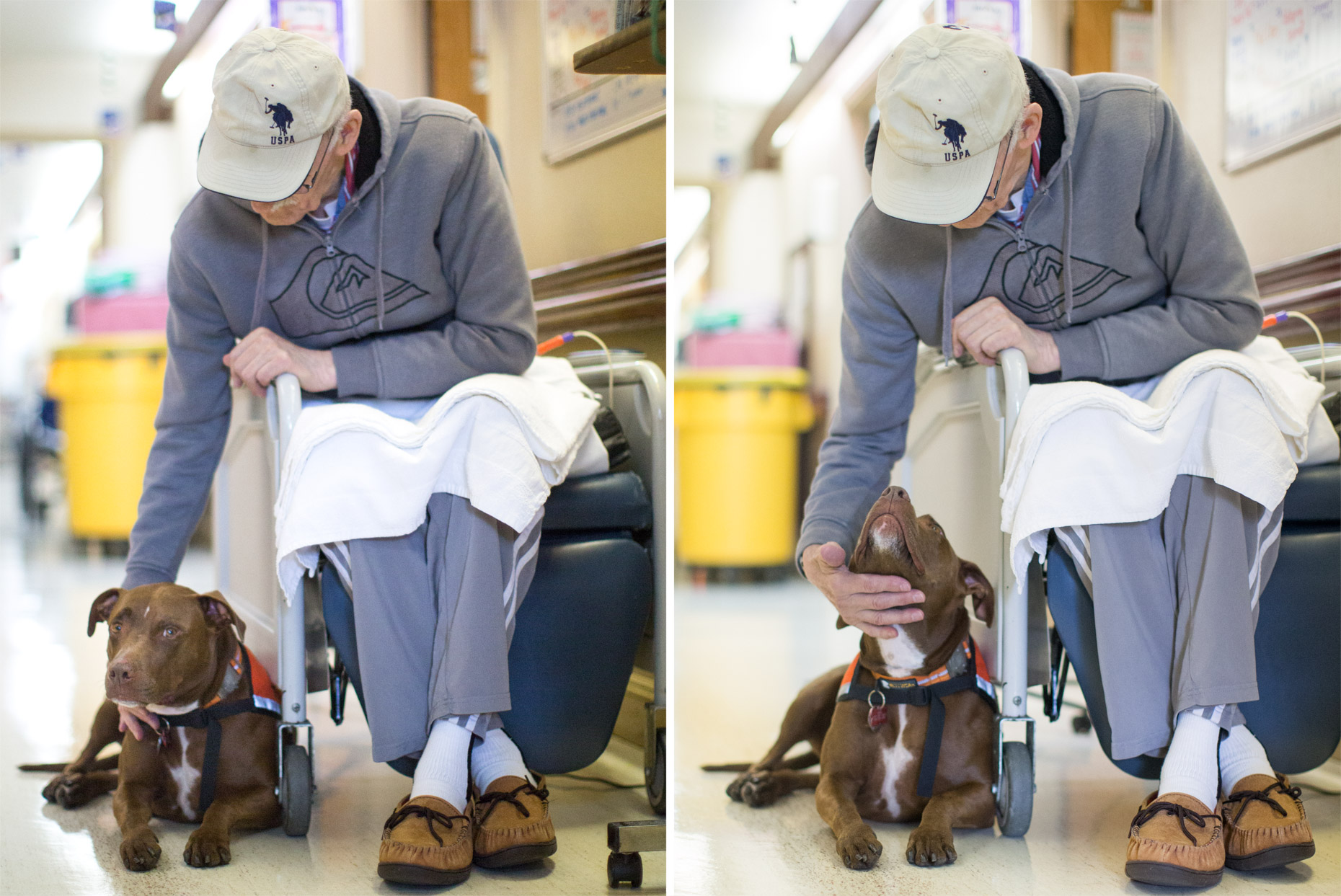 Editorial Photography | Man in Wheelchair Petting Therapy Dog by Mark Rogers