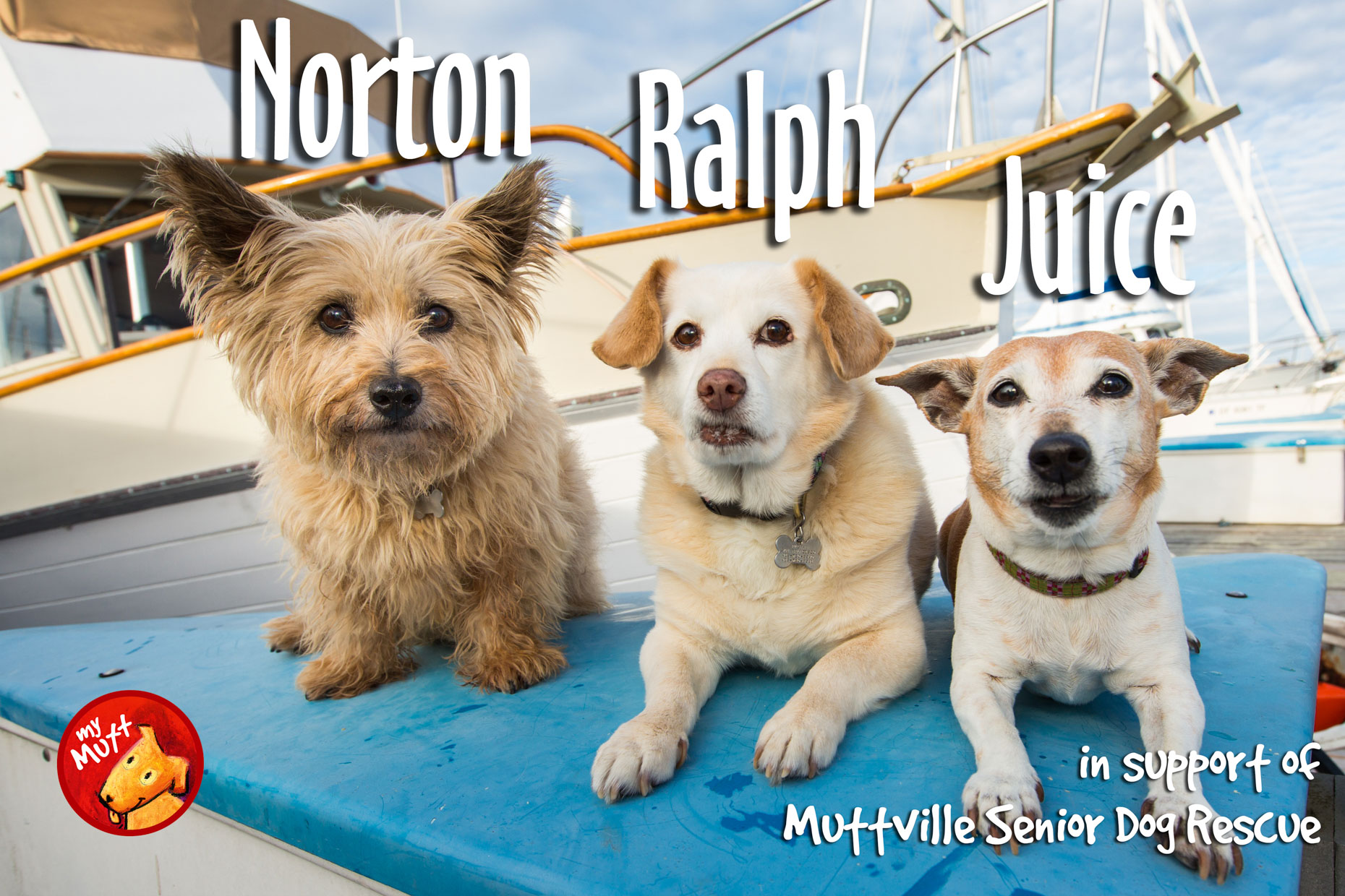 My Mutt Dog Rescue Poster | Three Dogs on a Boat by Mark Rogers