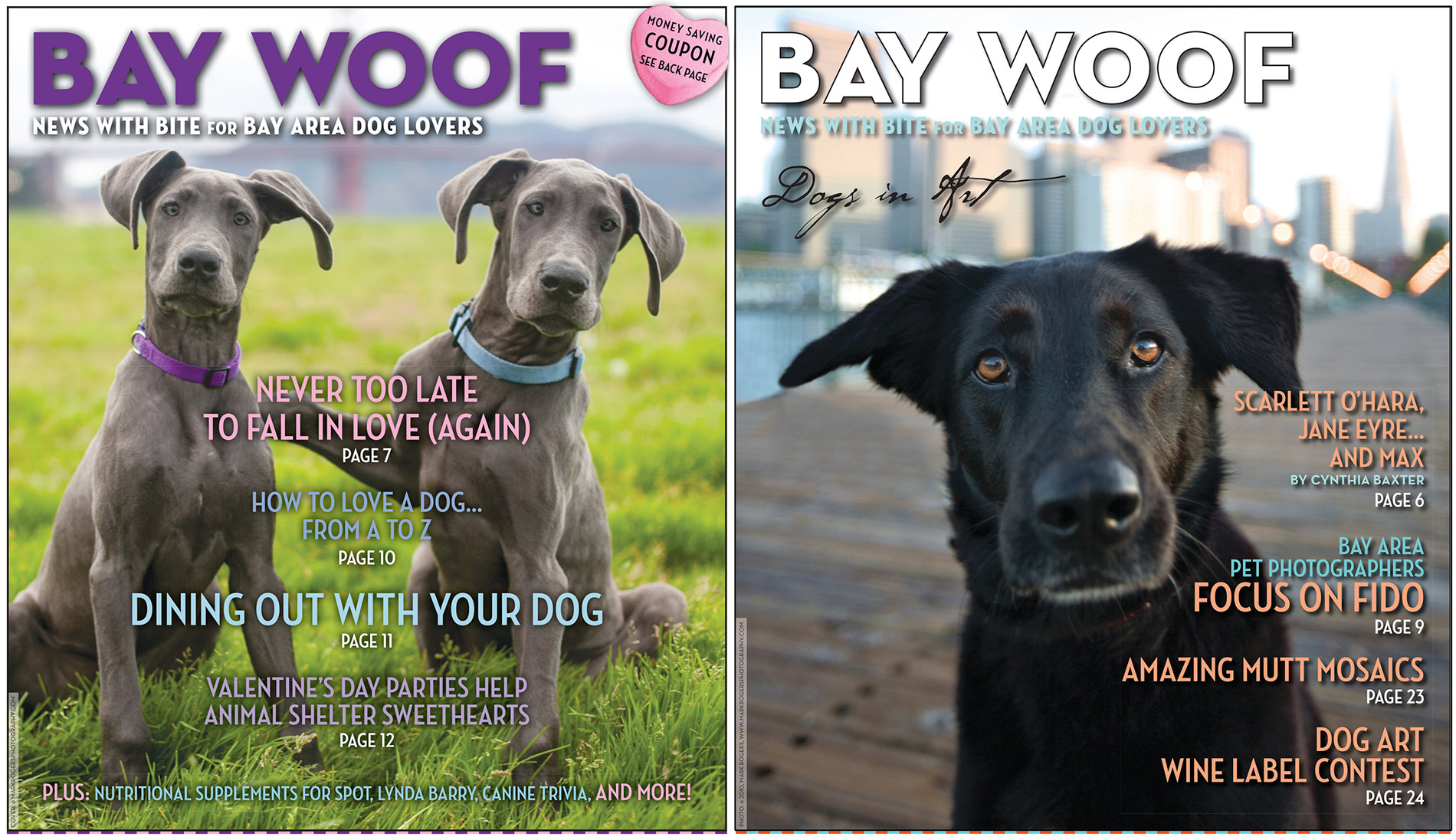 Editorial Photography | Bay Woof Cover Dogs by Mark Rogers