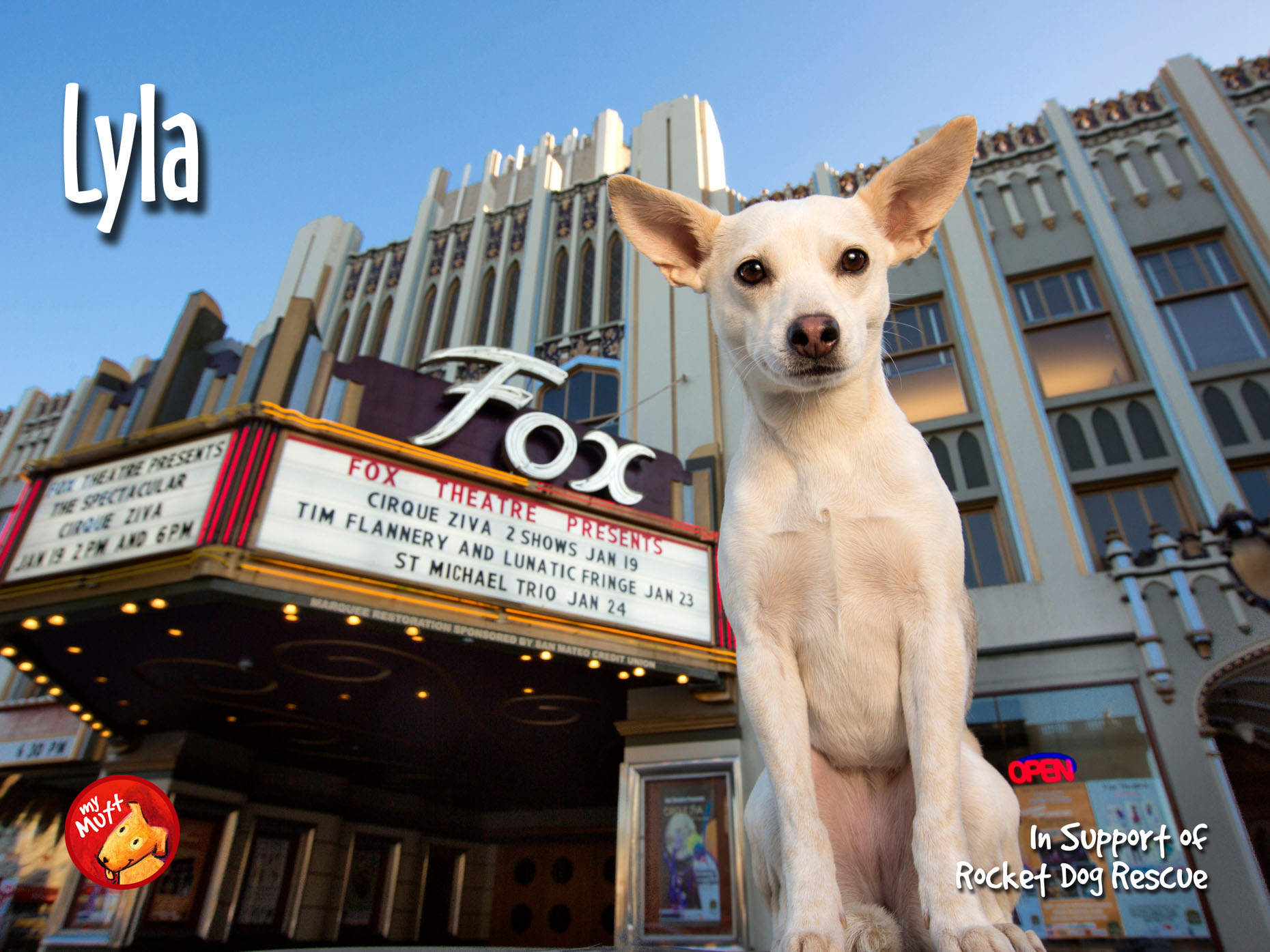 My Mutt Dog Rescue Poster | Chihuahua Dog and Theater Marquee by Mark Rogers