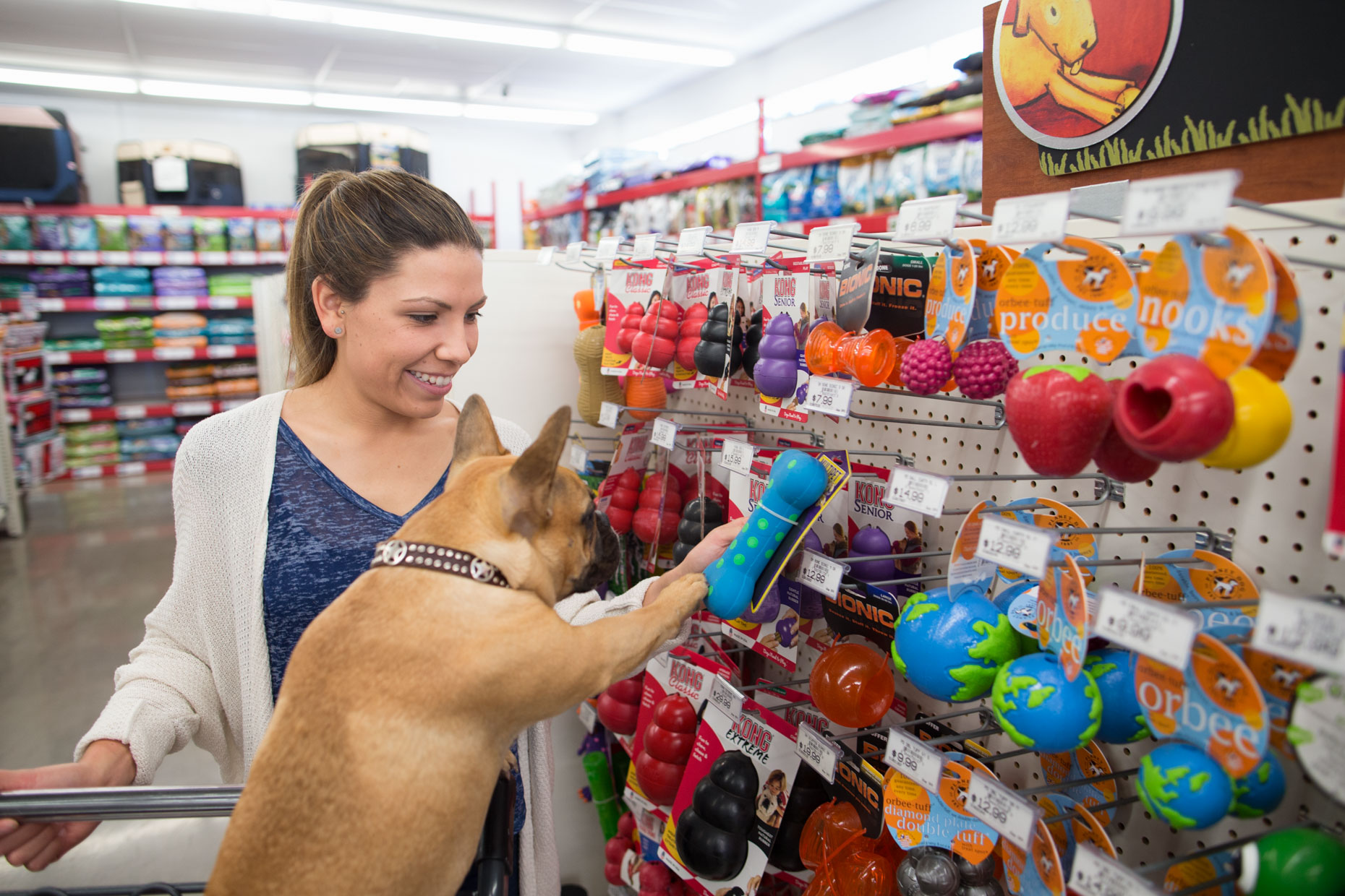 Commercial Dog Photography | Woman and Dog Picking Toys by Mark Rogers