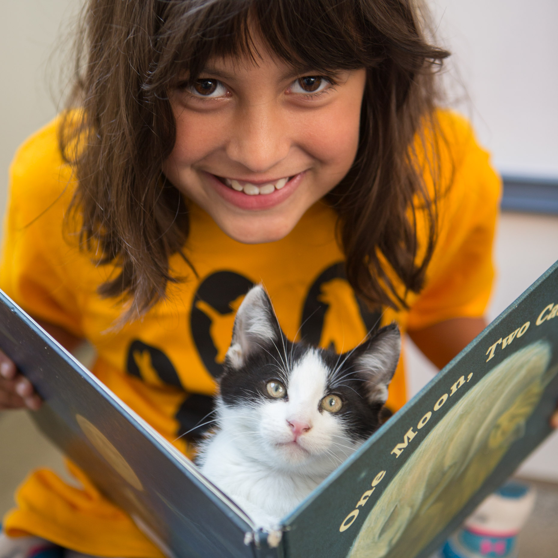 Pet Lifestyle Photography | Girl Holding Kitten in Book by Mark Rogers