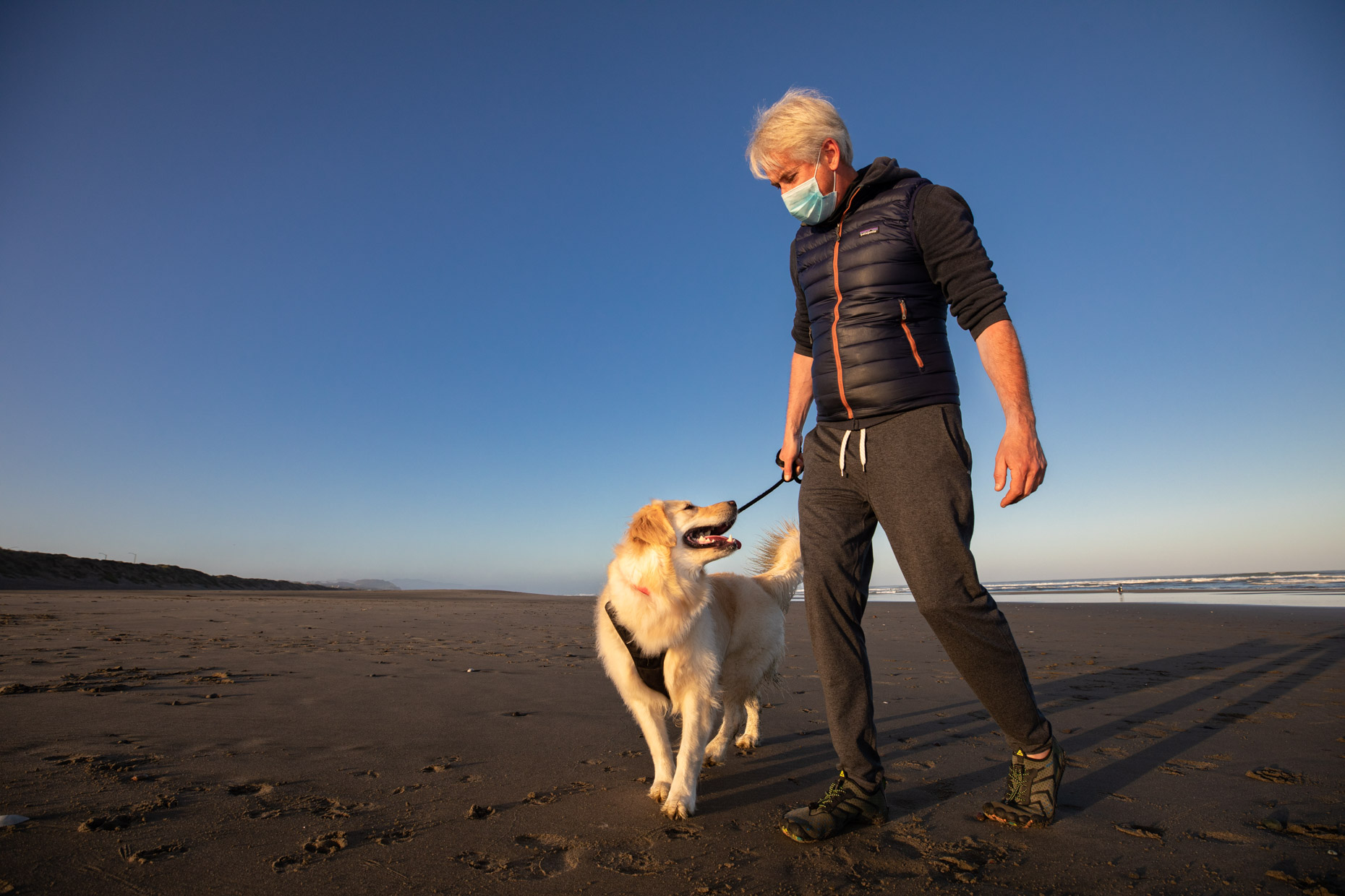man wearing surgical mask and walking his golden retriever on the beach
