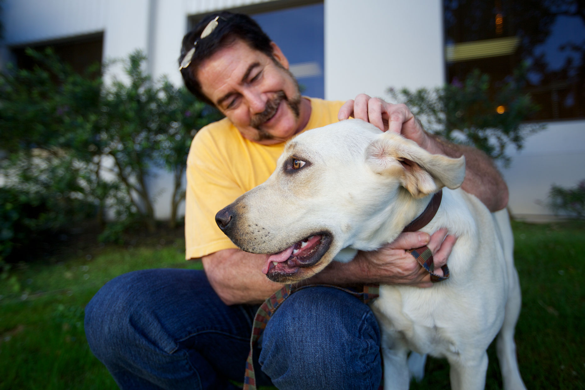 Advertising Photography | Man Petting Yellow Lab by Mark Rogers