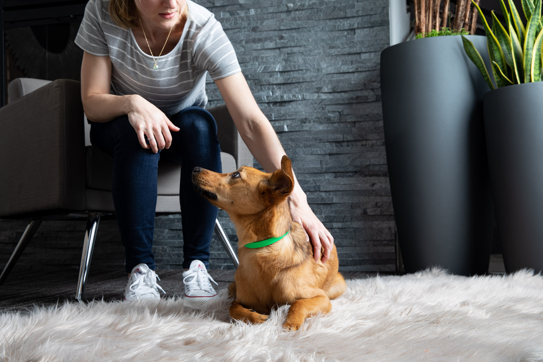 Pet Lifestyle Photography | Woman Pets Dog on Rug by Mark Rogers