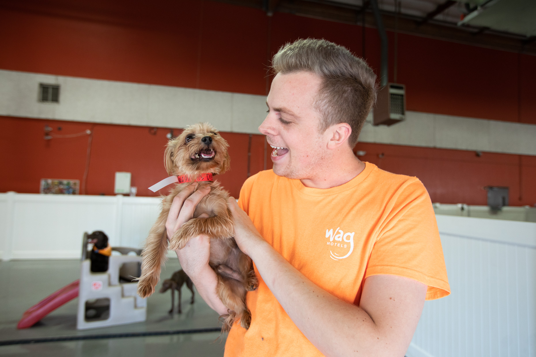 Pet Advertising Photography | Man Holding Dog at Pet Daycare